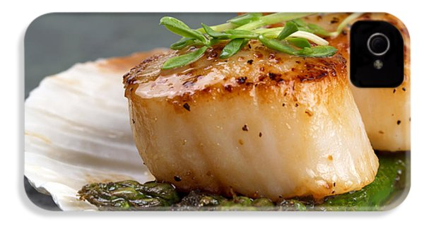 Seared Scallops IPhone 4s Case by Jane Rix