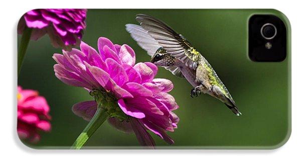 Simple Pleasure Hummingbird Delight IPhone 4s Case by Christina Rollo