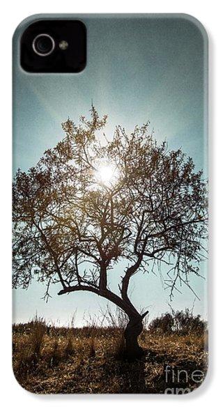 Single Tree IPhone 4s Case
