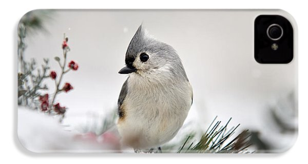 Snow White Tufted Titmouse IPhone 4s Case by Christina Rollo
