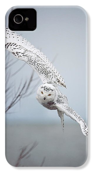 Snowy Owl In Flight IPhone 4s Case by Carrie Ann Grippo-Pike