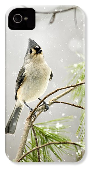 Snowy Songbird IPhone 4s Case by Christina Rollo