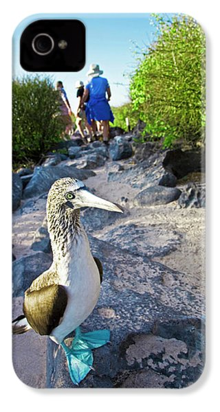 South America, Ecuador, Galapagos IPhone 4s Case by Miva Stock