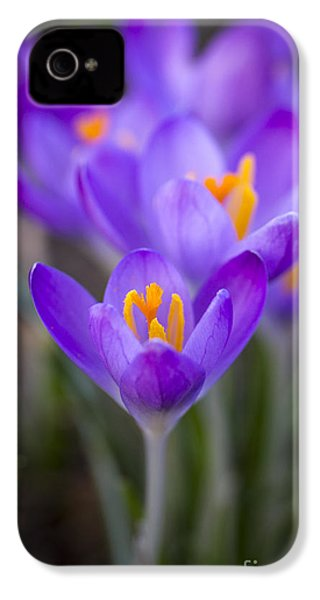 Spring Has Sprung IPhone 4s Case