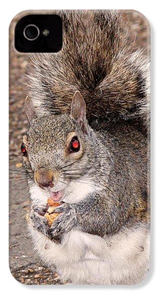 Squirrel Possessed IPhone 4s Case