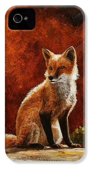 Sun Fox IPhone 4s Case by Crista Forest