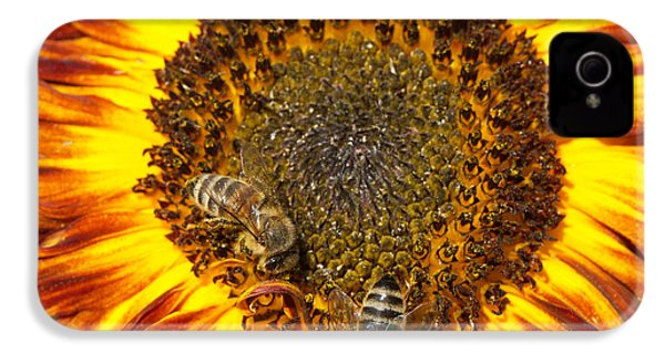 Sunflower With Bees IPhone 4s Case