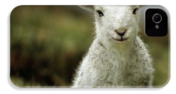 The Lamb IPhone 4s Case by Angel  Tarantella