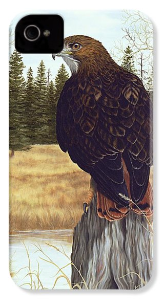 The Watchful Eye IPhone 4s Case by Rick Bainbridge