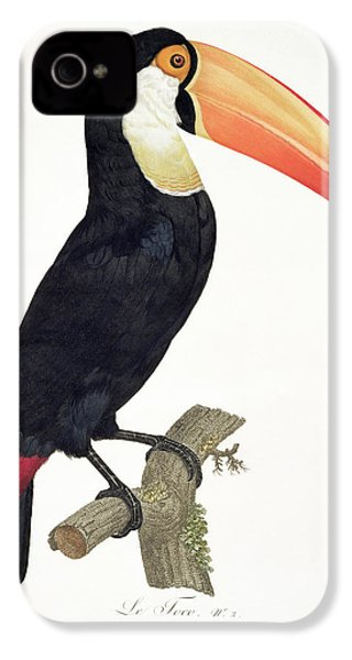 Toucan IPhone 4s Case by Jacques Barraband