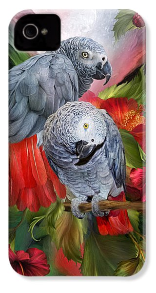 Tropic Spirits - African Greys IPhone 4s Case