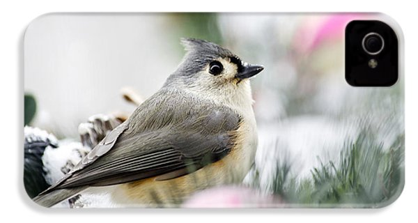 Tufted Titmouse Portrait IPhone 4s Case by Christina Rollo