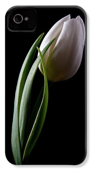 Tulips IIi IPhone 4s Case by Tom Mc Nemar