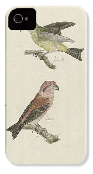 Two Crossbills, Possibly Christiaan Sepp IPhone 4s Case by Quint Lox