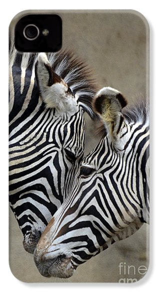 Two Zebras IPhone 4s Case by Mark Newman
