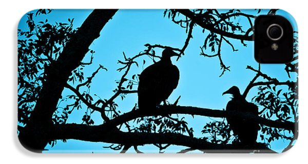 Vultures IPhone 4s Case by Delphimages Photo Creations