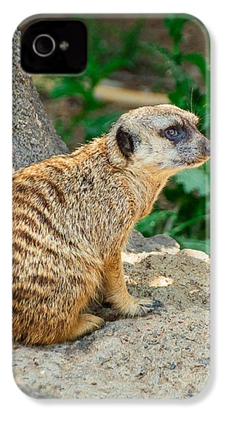Watchful Meerkat Vertical IPhone 4s Case by Jon Woodhams