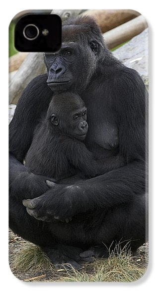 Western Lowland Gorilla Mother And Baby IPhone 4s Case by San Diego Zoo