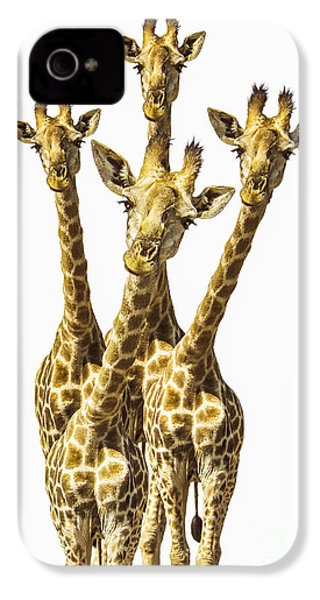 What Are You Looking At? IPhone 4s Case by Diane Diederich