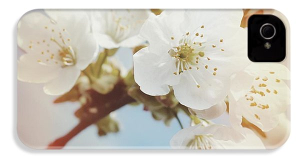 White Apple Blossom In Spring IPhone 4s Case by Matthias Hauser
