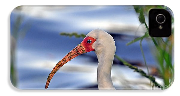 Intriguing Ibis IPhone 4s Case by Al Powell Photography USA