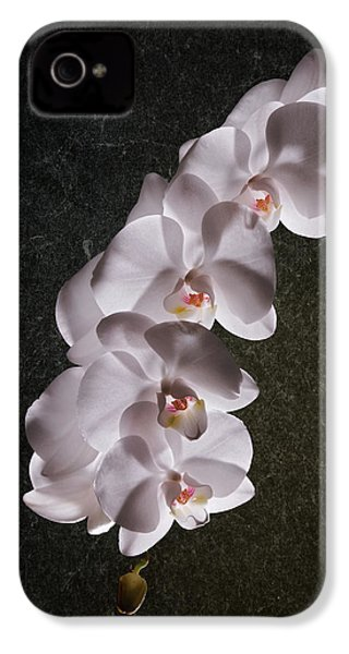 White Orchid Still Life IPhone 4s Case by Tom Mc Nemar
