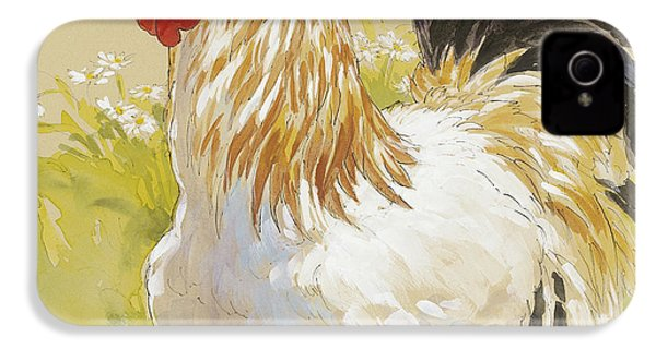 White Rooster IPhone 4s Case by Tracie Thompson