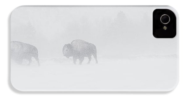 Whiteout IPhone 4s Case by Sandy Sisti