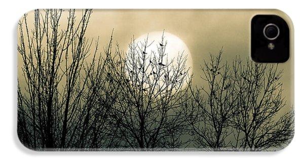 Winter Into Spring IPhone 4s Case by Bob Orsillo