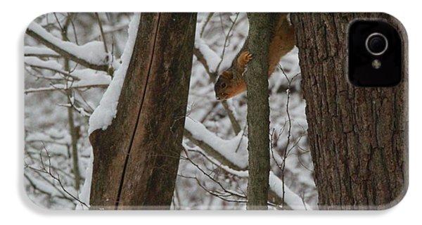 Winter Squirrel IPhone 4s Case
