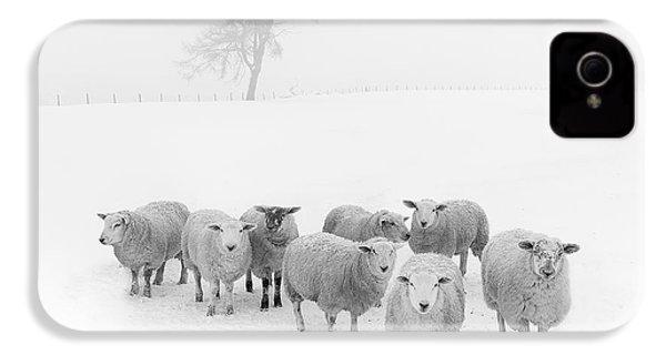 Winter Woollies IPhone 4s Case by Janet Burdon