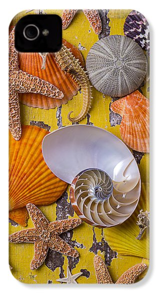 Wonderful Sea Life IPhone 4s Case by Garry Gay