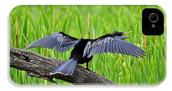 Wonderful Wings IPhone 4s Case by Al Powell Photography USA