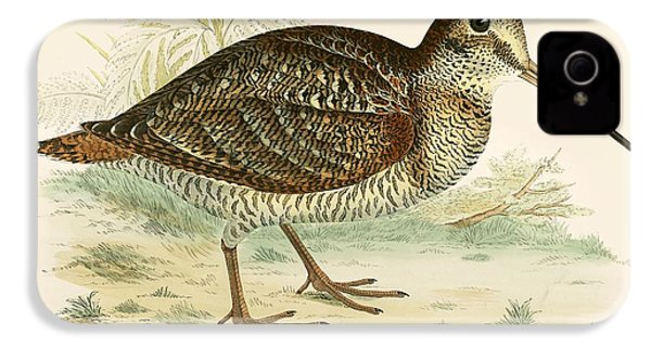 Woodcock IPhone 4s Case by Beverley R Morris