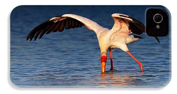 Yellow-billed Stork Hunting For Food IPhone 4s Case by Johan Swanepoel