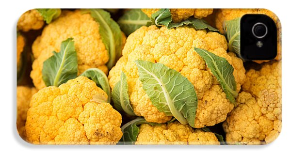 Yellow Cauliflower IPhone 4s Case by Rebecca Cozart