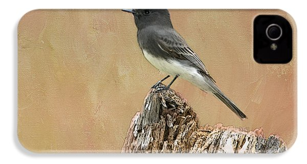 Black Phoebe IPhone 4s Case by Betty LaRue