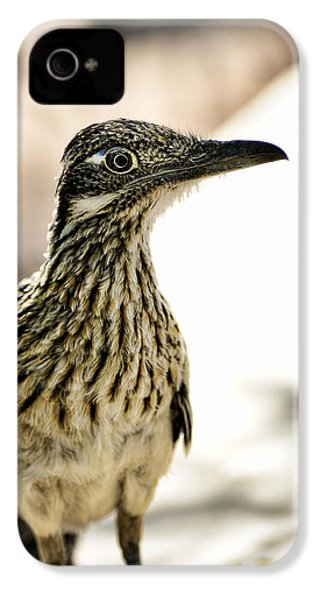 Greater Roadrunner  IPhone 4s Case by Saija  Lehtonen