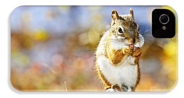 Red Squirrel IPhone 4s Case by Elena Elisseeva