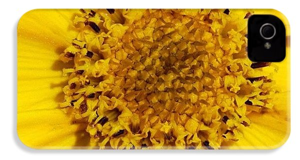 Yellow Flower Detail IPhone 4s Case
