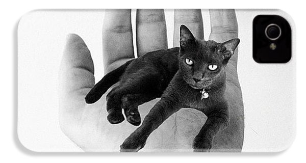 A Cat In The Hand Is Worth IPhone 4s Case