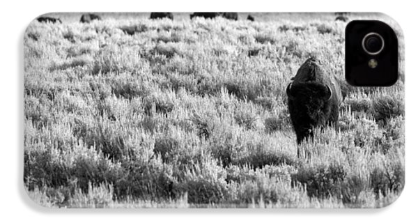 American Bison In Black And White IPhone 4s Case by Sebastian Musial