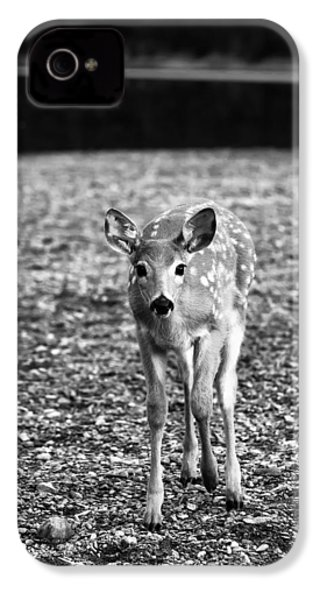 Bambi In Black And White IPhone 4s Case by Sebastian Musial