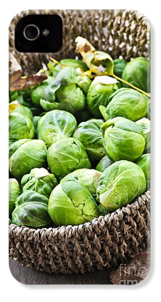 Basket Of Brussels Sprouts IPhone 4s Case by Elena Elisseeva