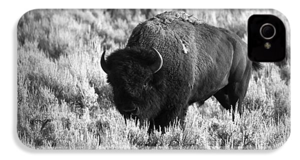 Bison In Black And White IPhone 4s Case by Sebastian Musial