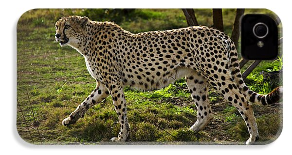 Cheetah  IPhone 4s Case by Garry Gay