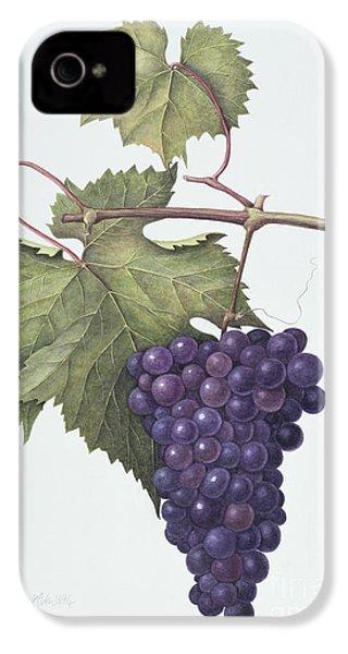 Grapes  IPhone 4s Case by Margaret Ann Eden