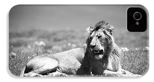 Lion King In Black And White IPhone 4s Case by Sebastian Musial