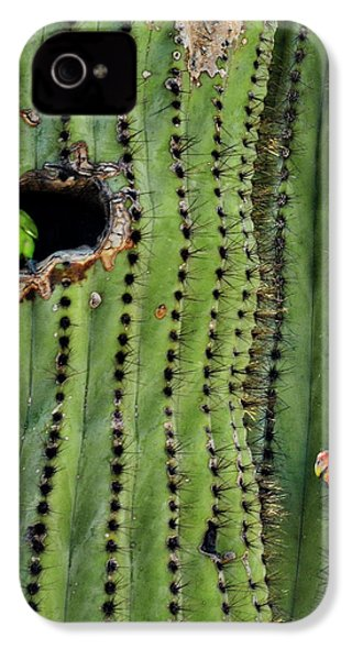 Lovebirds And The Saguaro  IPhone 4s Case