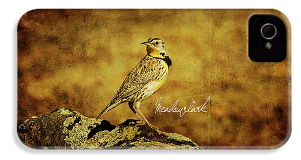 Meadowlark IPhone 4s Case by Lana Trussell